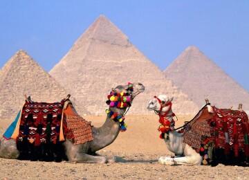 Виза в Египет для россиян в 2021 году: получить в аэропорту или можно без визы?