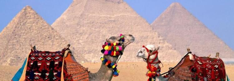 Виза в Египет для россиян в 2020 году: получить в аэропорту или можно без визы?