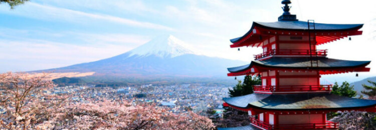Виза в Японию для россиян в 2021 году должна оформляться заранее