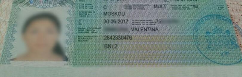 Шенгенская виза в Нидерланды для россиян — как получить самостоятельно в 2020 году