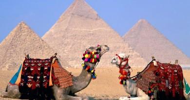 Виза в Египет для россиян в 2018 году: получить в аэропорту или можно без визы?